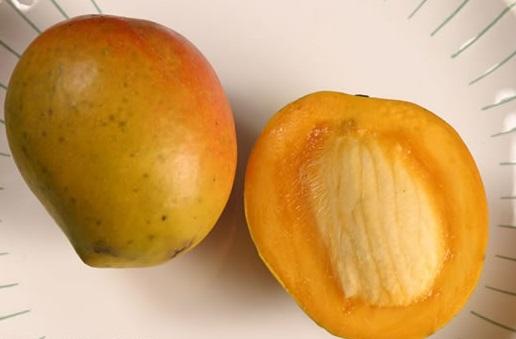 Bombay-mango