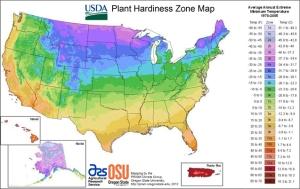 USDA zones